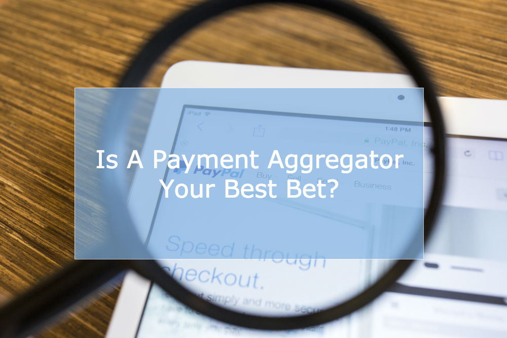 Why Payment Aggregators are a Gamble for High Risk Merchants