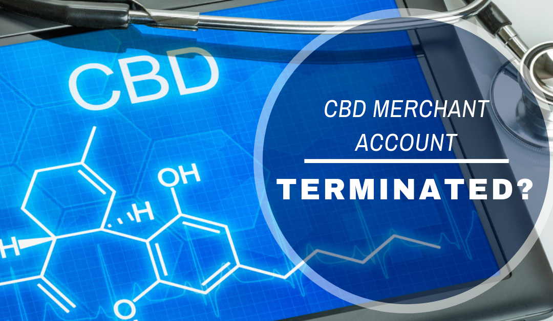 CBD Merchant Account Terminated?